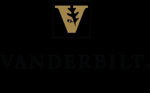 VSN logo 2